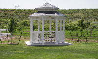 Summer2008---Gazebo.png